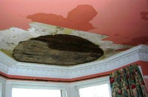 Water Damage Repairs Edinburgh - Property Restoration Services