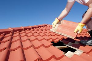roofing services edinburgh, local roofers, Property Restoration Services